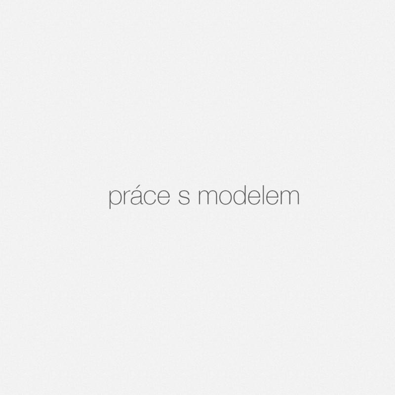 portrét- PRÁCE S MODELEM